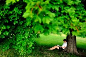 shady-tree-reading